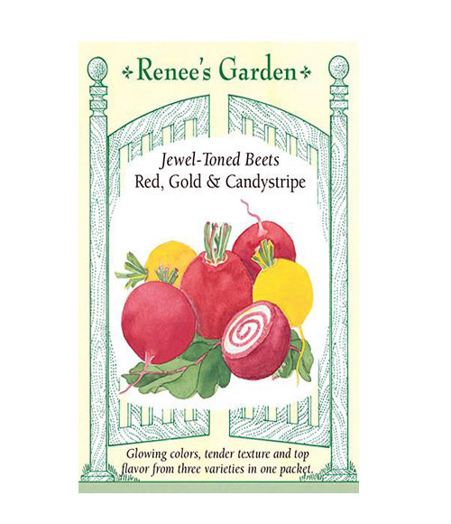 Jewel-Toned Beets Red, Gold & Candystripe