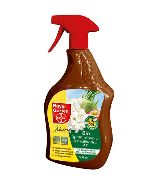 Organic Spider Mite & Pest Free