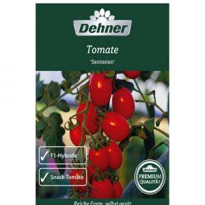 طماطم سانتاسين