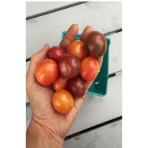 Organic Bumble Bee Mix Cherry Tomato