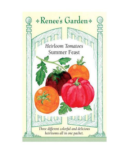 طماطم متنوع عيد الصيف