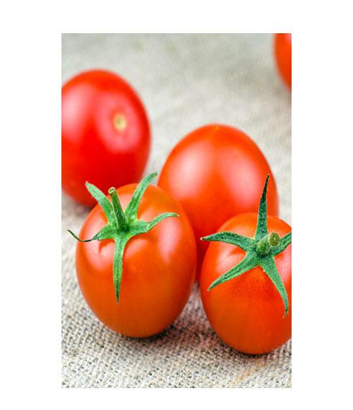 طماطم نيوورك