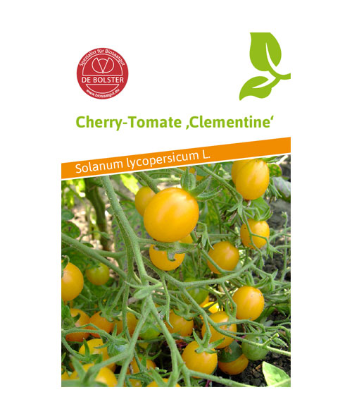 Cherry Tomato Clementine