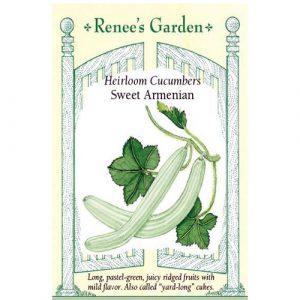 Cucumbers Sweet Armenian - My Organic World