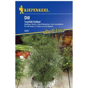 Dill Delikat (Pot Dill) - My Organic World