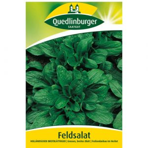 Dutch broadleaf - My Organic World