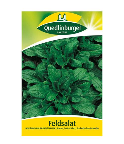 Dutch broadleaf - My Organic World