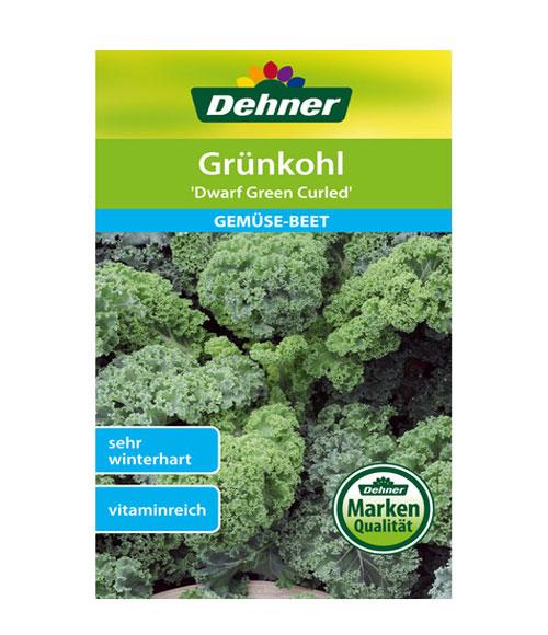 Dwarf Green Curled - My Organic World