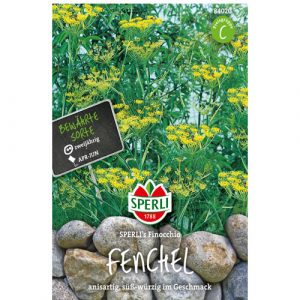 Fennel Finocchio - My Organic World