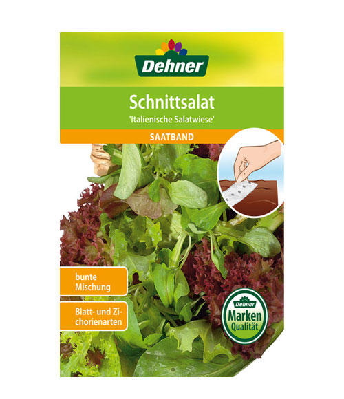 Italian Salad - My Organic World