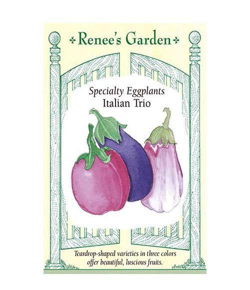 Italian Trio - My Organic World