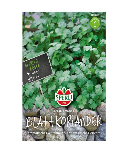 Leaf Coriander Marino - My Organic World