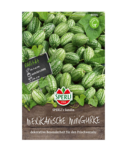 Mini Cucumber Sandia - My Organic World