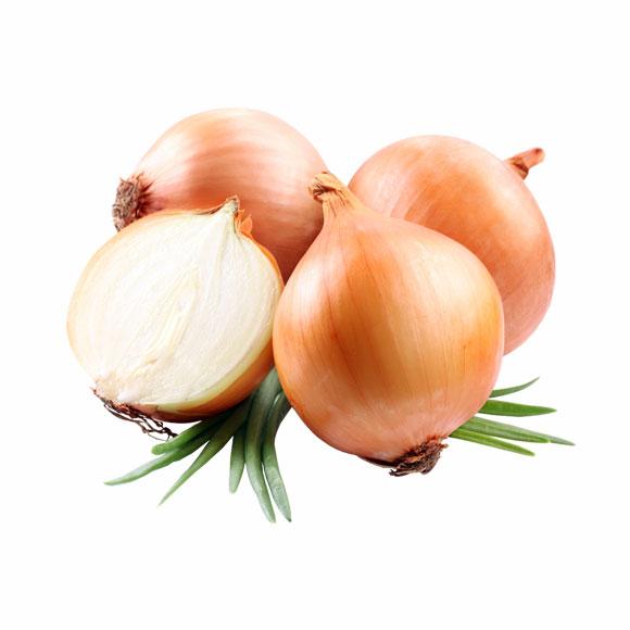 بذور البصل