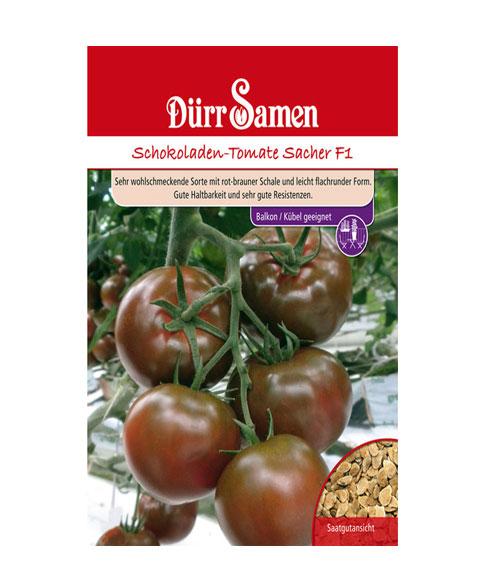 طماطم شوكليت ساشر