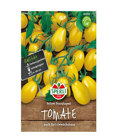 طماطم عرموطي اصفر